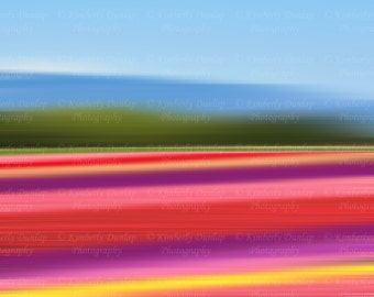 Abstract Flower Field Photograph {Floral Tulip Wall Art Pink Red Yellow Purple Picture Rainbow Photo Large Photography Home Decor Print}