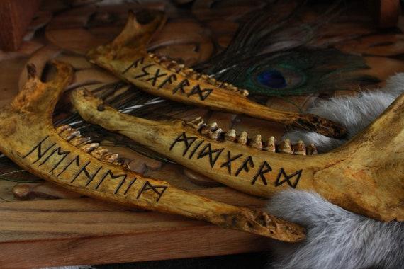 Runic Jaw Bone Asgard - Midgard - Helheim
