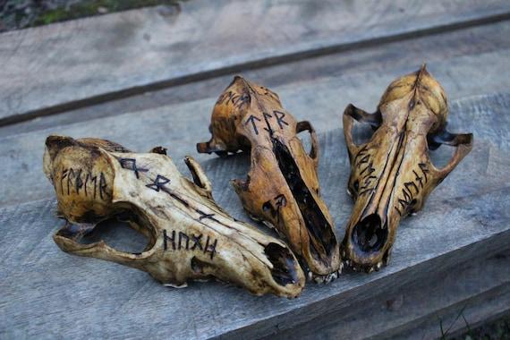 Runic Tribute Skulls