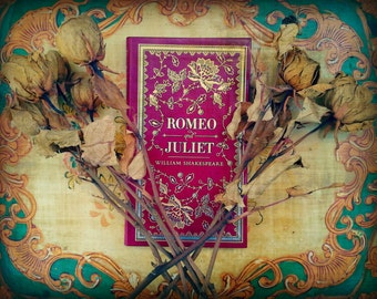 Romeo and Juliet: Fine art photo, wall decor, librarian, teacher, literature, Shakespeare, books, library, roses, red, blue, wall art