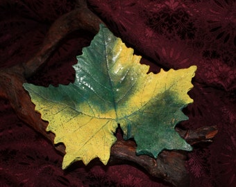 """SYCAMORE Maple (12.5"""" ) Concrete Leaf Casting - Beautiful fall colors are captured forever in this unique leaf.  FREE SHIPPING!!!"""