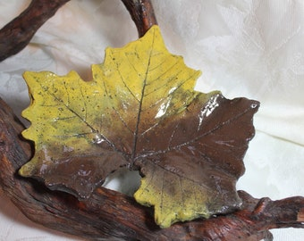 """MAPLE Sycamore (9"""")  Concrete Leaf Casting - Wonderful colors of fall accent this lovely leaf.  Perfect for the leaf lover.  FREE SHIPPING!"""