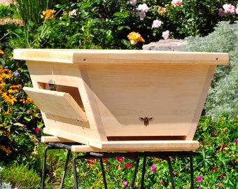 Golden Mean Ratio Top Bar Bee Hive with Viewing Window
