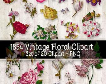 1854 Vintage Floral Clipart - Set of 20 Clipart