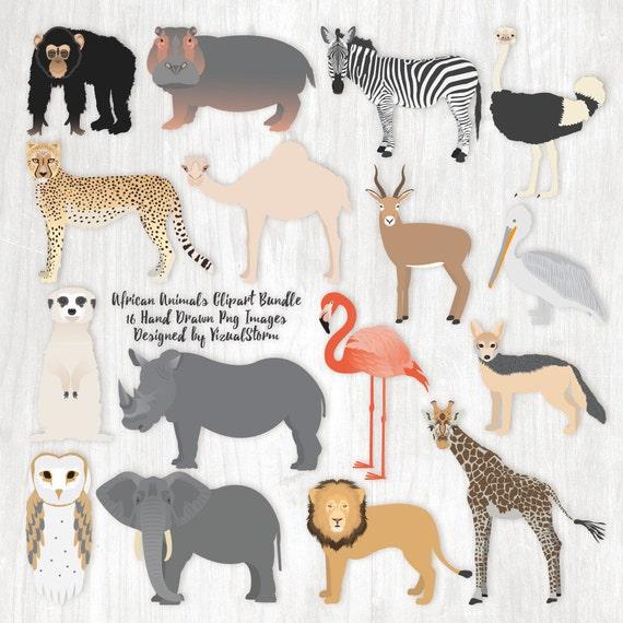 African Animal Clipart Bundle Safari Animal Graphics African Etsy