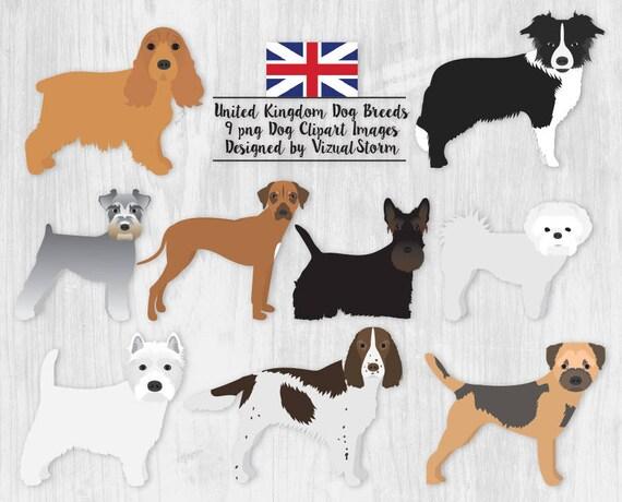 United Kingdom Dog Breeds Clipart Pet Graphics Spaniel Collie Ridgeback  Westie Maltese Schnauzer Terrier Hand Drawn Dogs from Great Britain