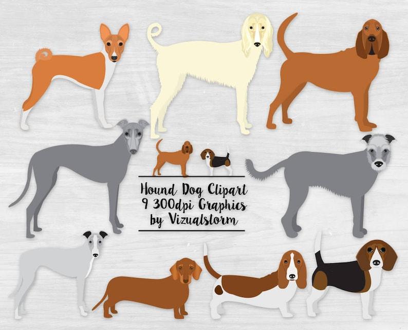 Hunting Dog Breeds Clipart Png Hounds Bloodhound Basset Etsy