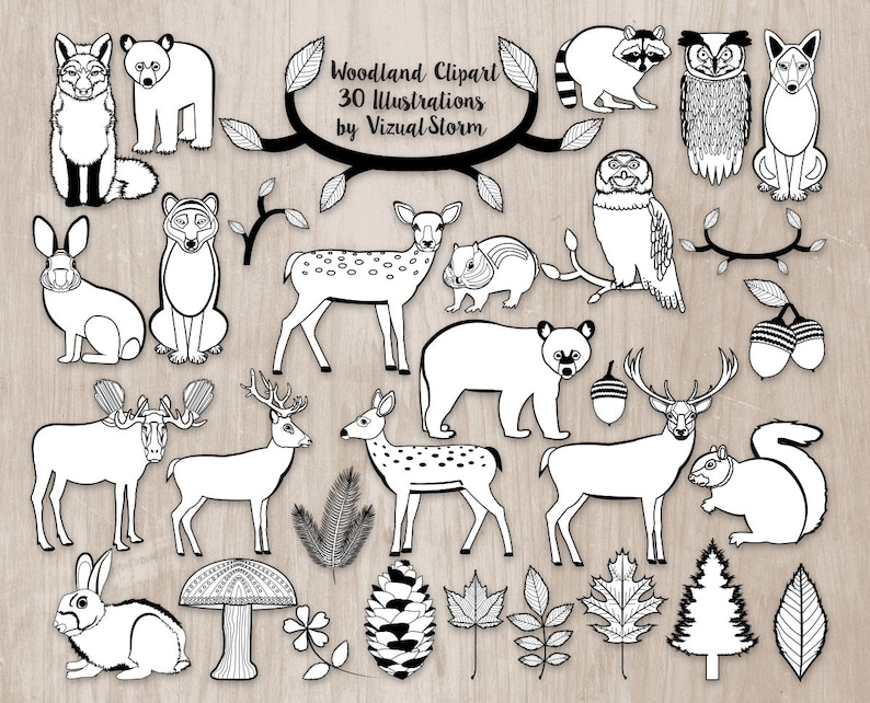 Black White Woodland Animal Doodles Clipart Forest Animal Etsy