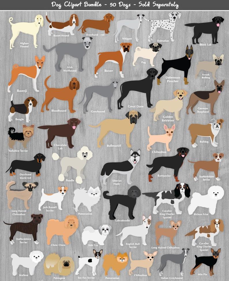 British Terrier Dog Breeds Clipart INSTANT DOWNLOAD Bull Terrier Yorky Border Jack Russel Manchester Staffy Boston Schnauzer Scotty