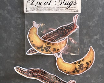 Banana slug and Leopard slug sticker pack, 2 vinyl stickers pacific northwest nature gardener gift slug bugs laptop macbook sticker
