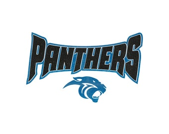 c62985e1 Panthers Glitter Iron On Heat Transfer Vinyl Customizable Decal Sports Team  Personalized Fan Wear Spirit Wear