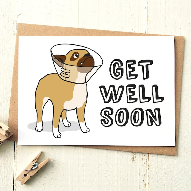 Funny Get Well Card Get Well Soon Card Dog Card Get Well Card