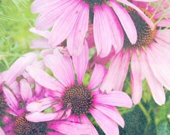 Pink Grunge Flower Photo Print