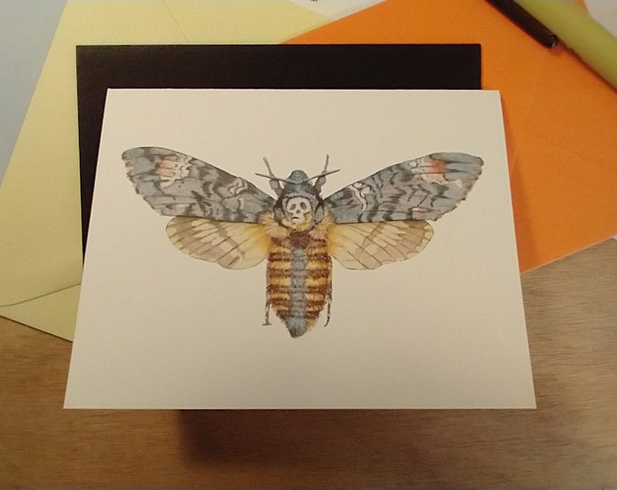 Death's Head Moth Folded Note 10 Pack
