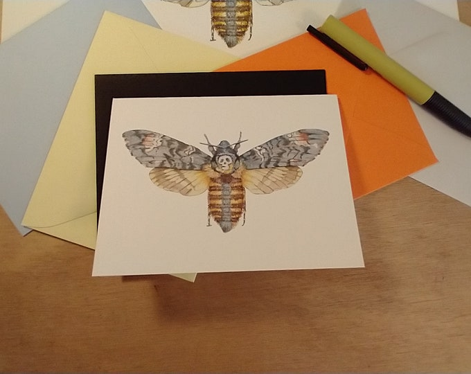 Death's Head Moth Single Folded Note Card
