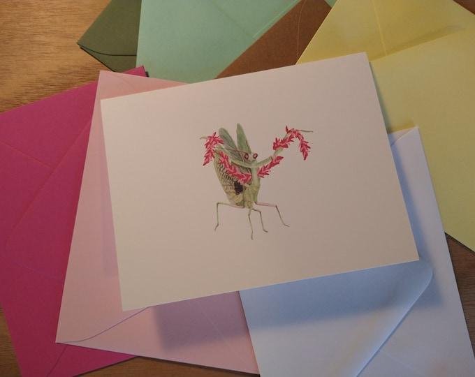 Diva Mantis Folded Note 10 Pack