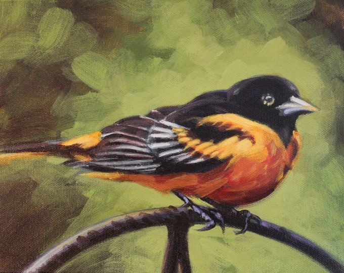 ORIOLE, Original Acrylic Painting on Canvas, Giclee Print on Paper, or Gallery Wrap Giclee Print on Canvas.