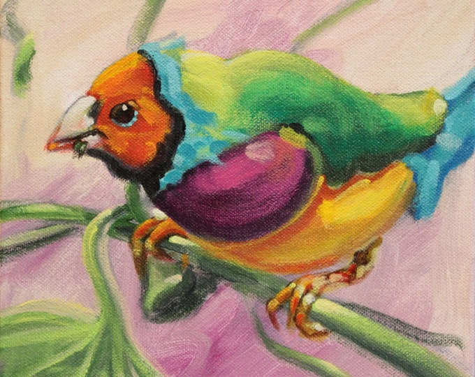 RAINBOW FINCH, Original Acrylic Painting on Canvas, Giclee Print on Paper, or Gallery Wrap Giclee Print on Canvas.
