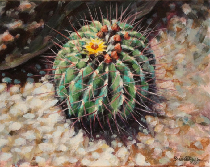 BARREL CACTUS BLOOM, Original Acrylic Painting on Canvas, Giclee Print on Paper, or Gallery Wrap Giclee Print on Canvas.
