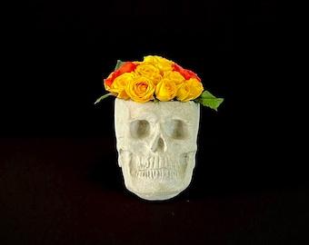 Skull Planter OG