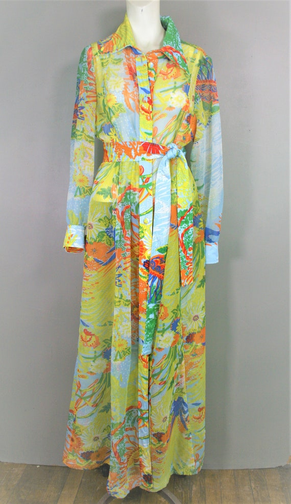 Sheer Swank - 1970s - Sheer Organza  Shirtdress -