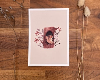 Postcard, postcard set, greeting card, watercolor, stationery, decoration, poster, squirrel