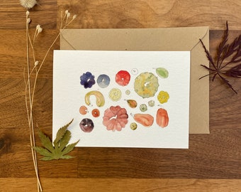 Map A6 - Curcubitaceae - greeting card, postcard, decoration, leaf, autumn, season, watercolor, pumpkin, squash, Halloween