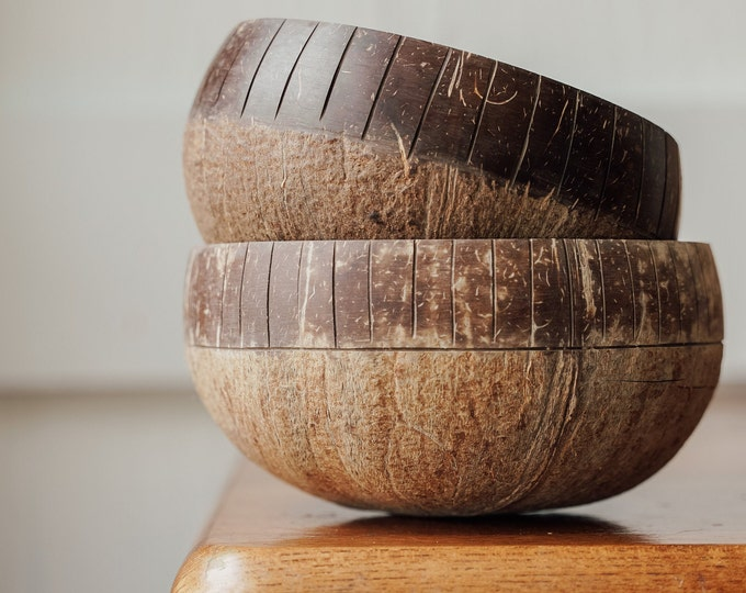 2 Tone Large Coconut Shell Bowls