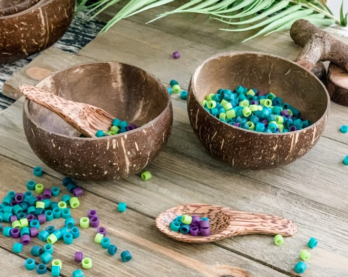 2 Medium Coconut Bowls and 2 Coconut Spoons