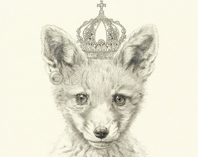 Crowned Fox