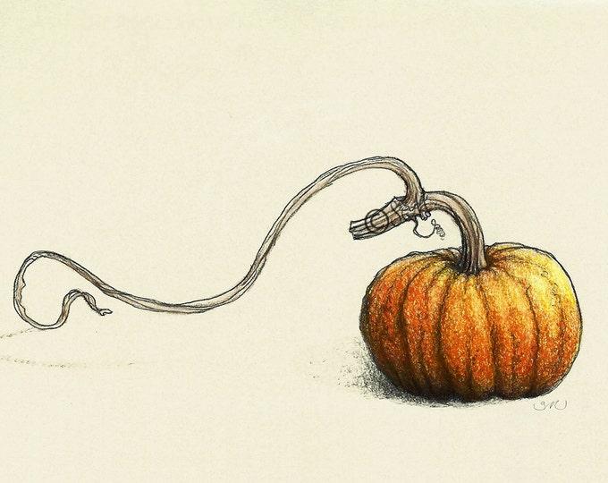 150 Pumpkin
