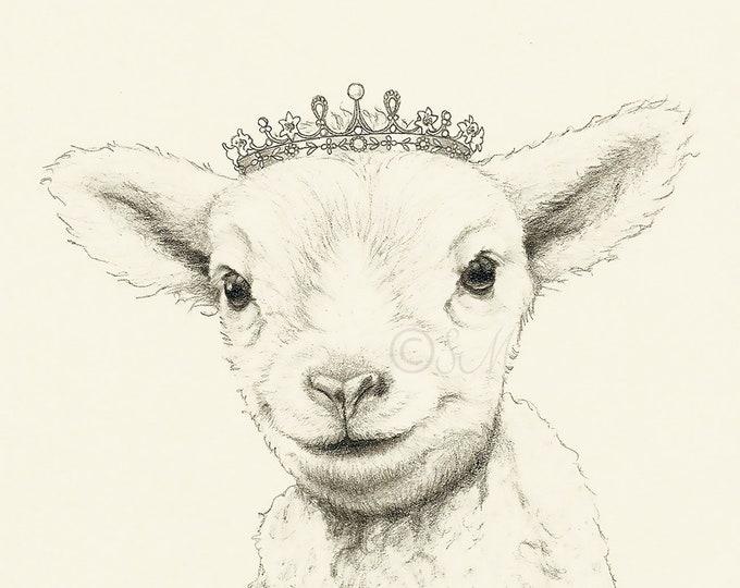 Crowned Baby Lamb