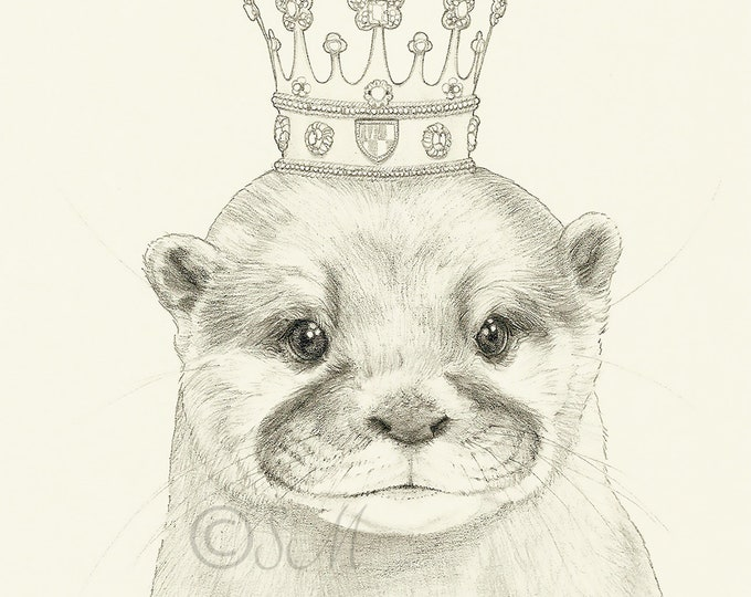 Crowned Otter