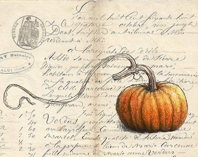 60 Pumpkin on French Document