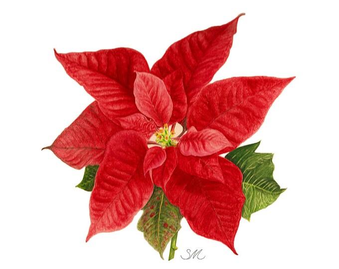 107 Poinsettia Painting card