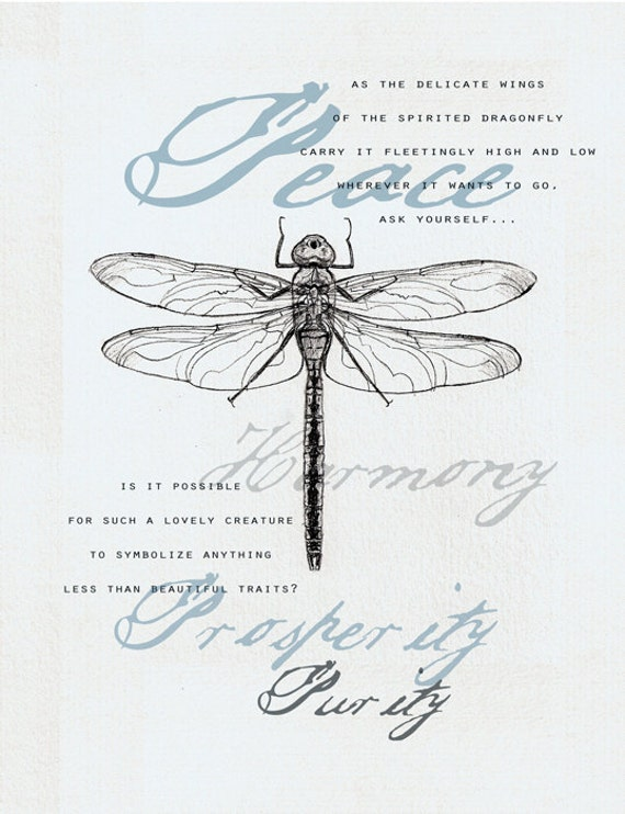 Items Similar To 35 Dragonfly Symbolism Card On Etsy