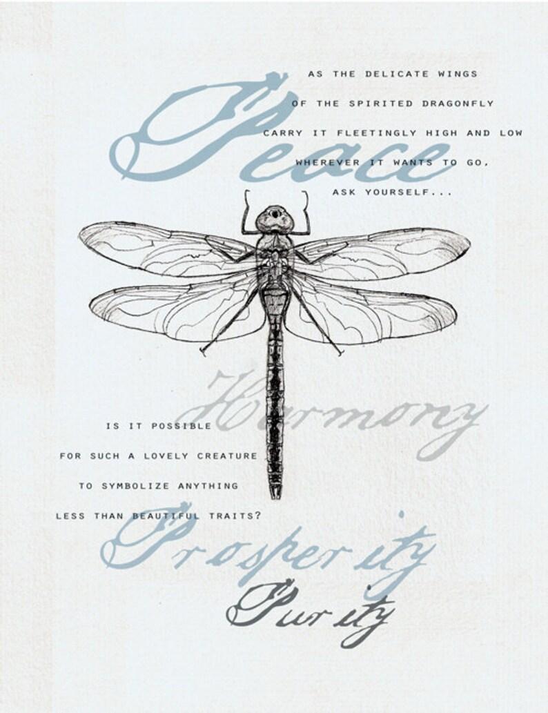 35 Dragonfly Symbolism Card