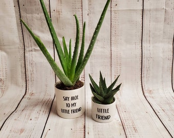 Set of 2 Punny plant pots,  succulent pots.  Plants NOT included Say aloe to my little friend, little friend