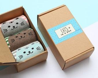 Cat Socks in a Box