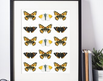 Butterfly poster - realistic watercolor print