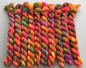 OOAK Hand Dyed Mini Sock Yarn