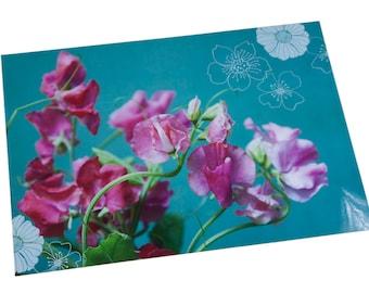 Plastic table set photo pink scent peas blue background