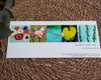 """Faire-part de Naissance """"frise photos naturelles et fleuries"""", à personnaliser"""