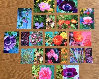 New batch of 12 flowery postcards