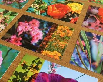 New batch of 5 flowery postcards