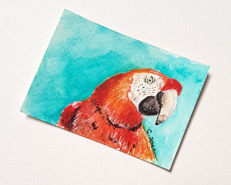 35 /'Red Parrot/' Watercolor Parrot ACEO Mini Red Parrot ACEO Painting No Original ACEO Watercolour Macaw Parrot Small Red Macaw Art