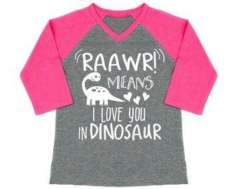 Valentine's Day Shirt, Dinosaur Shirt