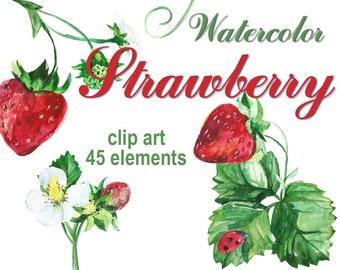Digital Watercolor Strawberry Clipart, printable Digital Scrapbooking, Food Clip art, Digital Collage, Instant Download, clip 50