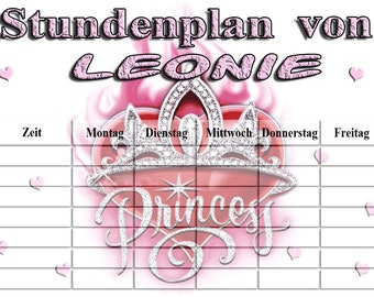 Schedule Princess pink wipeable A4