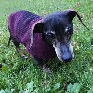 Dachshund Coat~Reversible Fleece Dog Jacket~Black Buffalo Plaid Fleece Dog Coat~Dachshund Clothes~Lumberjack Fleece Dachshund Jacket~Doxie~